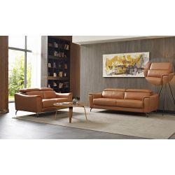 Livingsten Vintage Couch Set_10753