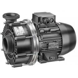 Speck Badu Pumpe ohne Vorfilter 21-50/42G 400V_32304