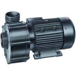 Speck Badu Pumpe ohne Vorfilter 21-80/32G_32316