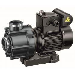 Speck Badu Pumpe ohne Vorfilter 42/9 0,45kW 400V_59033