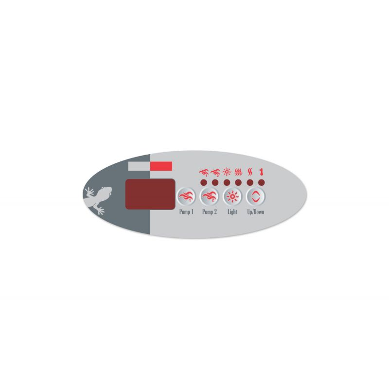 Gecko Overlay TSC 9 GE2_7179